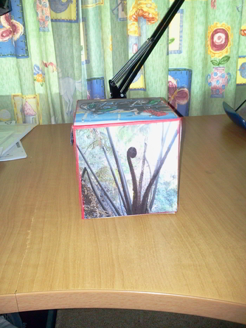 gift box - another side view with image taken during visit